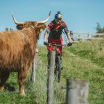 Danny MacAskill rides past highland cow // Fred Murray / Red Bull Content Pool // P-20161010-00767 // Usage for editorial use only // Please go to www.redbullcontentpool.com for further information. //